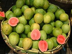 Jambu Biji / Jambu Kluthuk / Guava